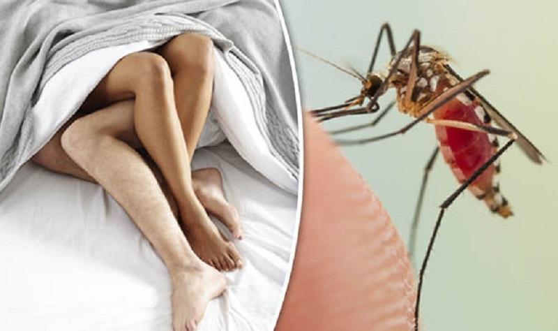 Diagnosis of Zika Virus
