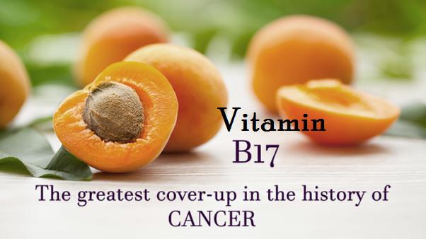Vitamin B17 Cancer Cure