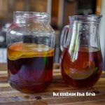 How to prepare kombucha tea at home easily and Get Benefit