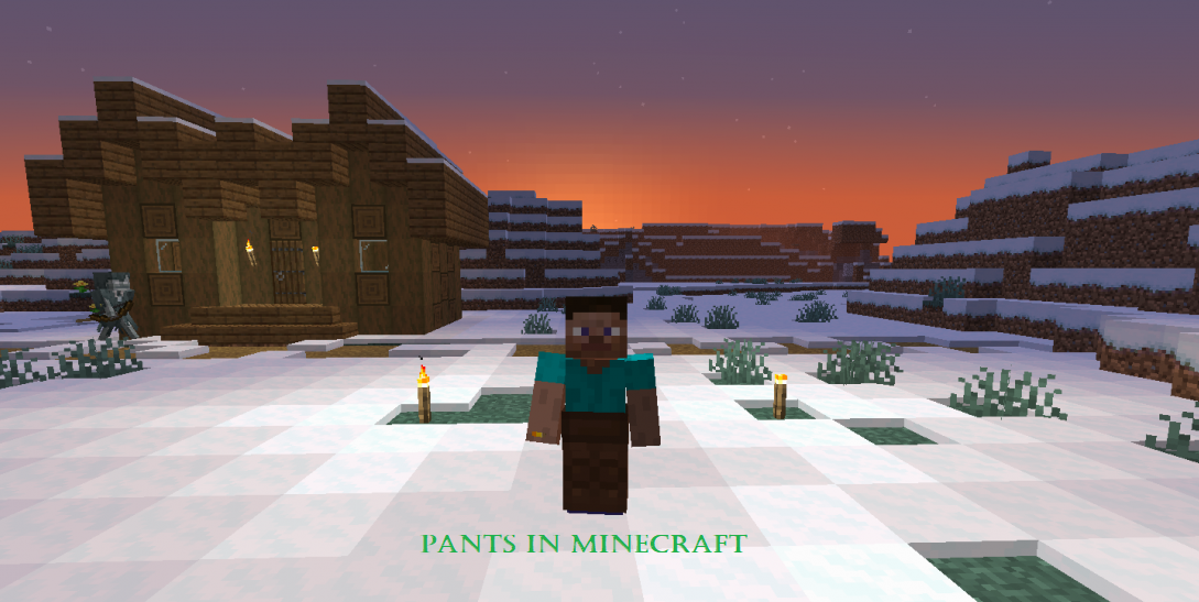 pants in minecraft